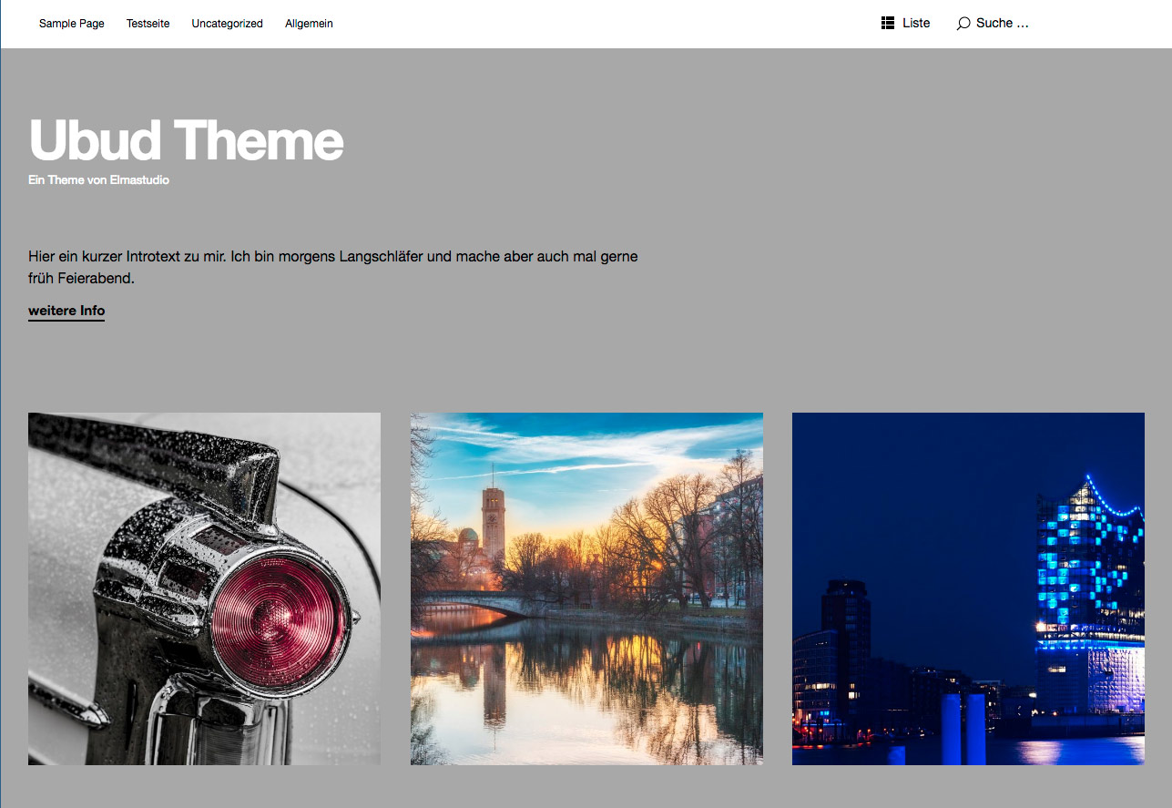 WordPress Theme Ubud Screenshot Elmastudio