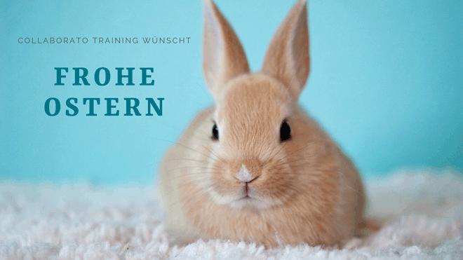 Ostern-Newsletterheader
