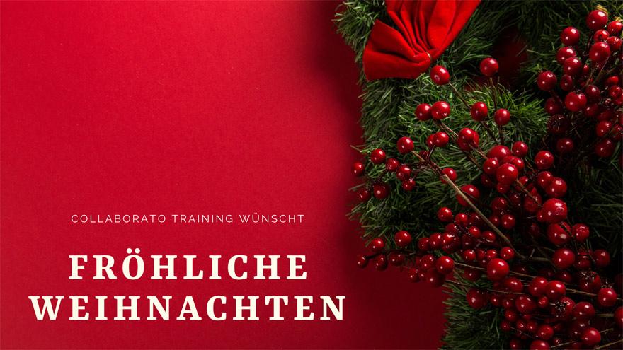 Newsletter-Header-Weihnachten2